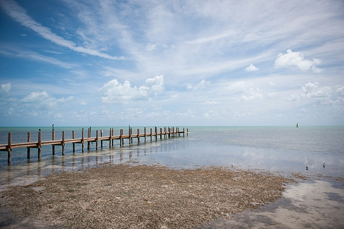 Low tide at the Caribbean Resort in Islamorada Florida